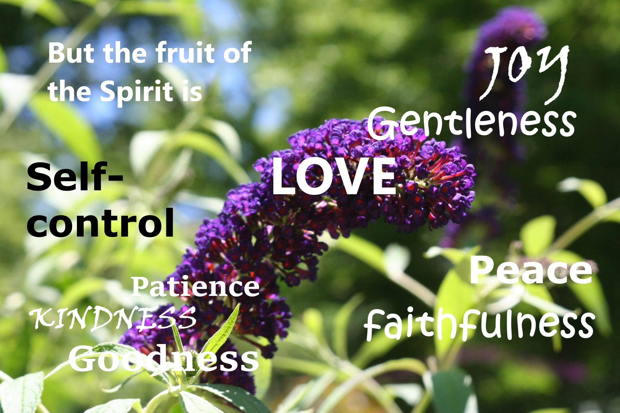 Fruits of the spirit.jpg